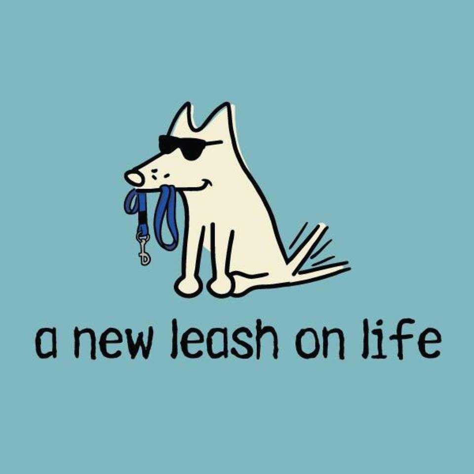 A New Leash On Life