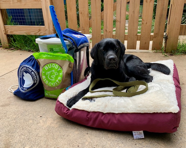 CTM Assistance Dog packed for pairing